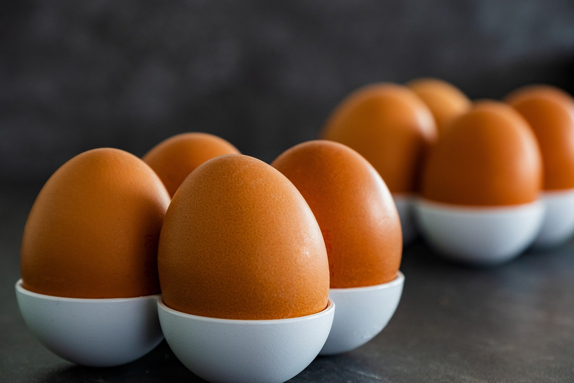 Know how to boil eggs - that the easiest task ever